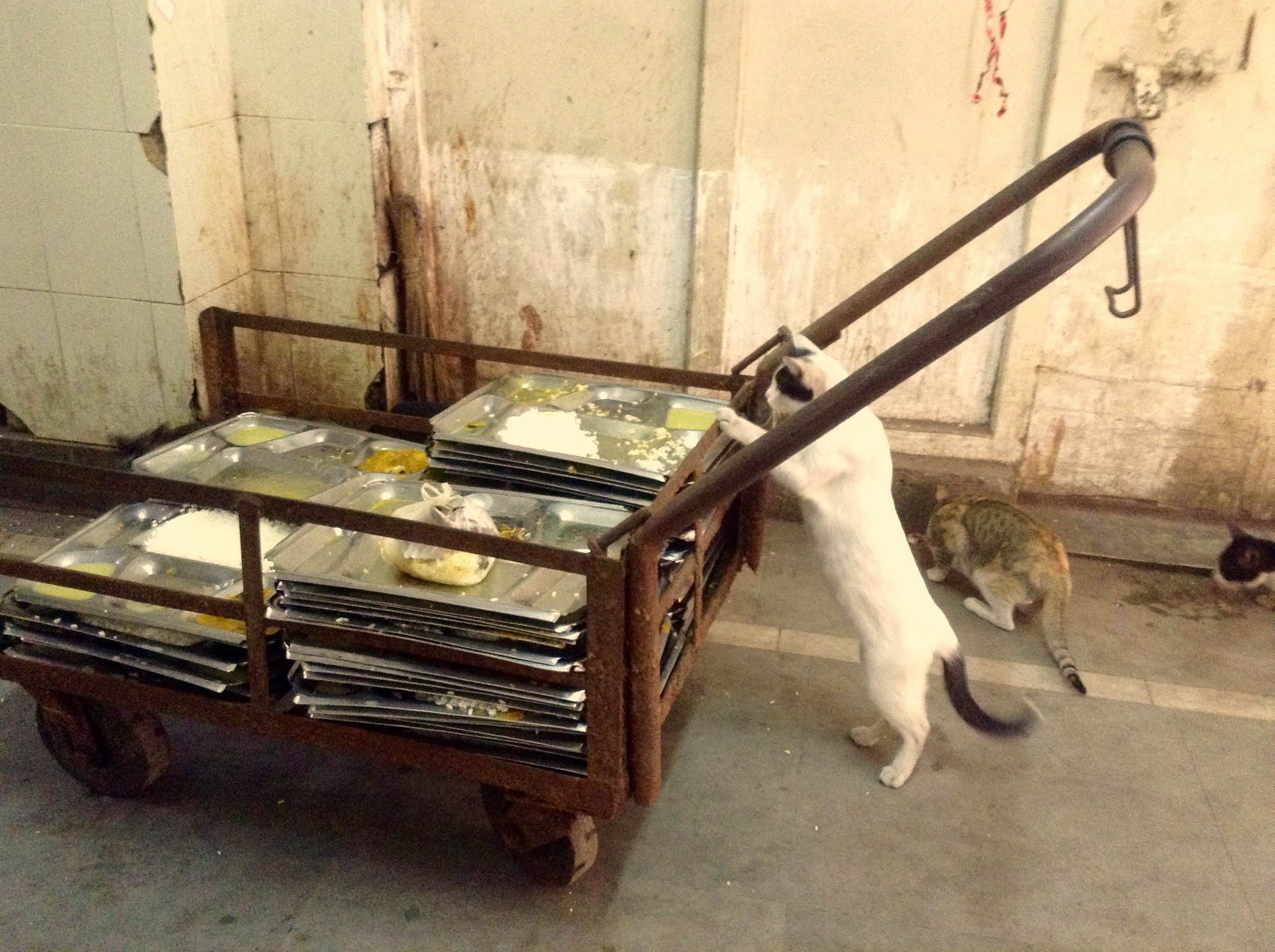 The meal trolley after lunch, outside the labour wards in the hospital in Kolkata. Photo: Sohini Chattopadhyay